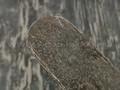 "Сталь ""Алмазка"" ХВ5 с ТО 63-64 HRC (205x39x3.6 мм) ковка"