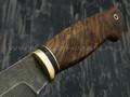 """Нож """"Акула"""" булатная сталь, рукоять корень ореха, латунь (Тов. Завьялова)"""