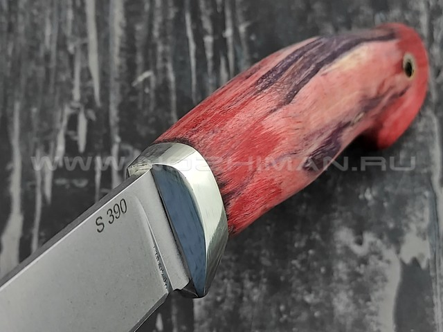 "Кузница Коваль нож ""Леголас"" сталь S390, рукоять стаб. карельская береза"