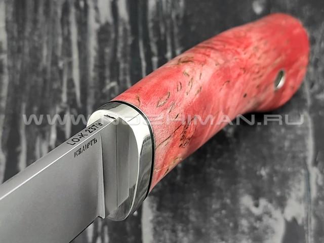 Кметь нож Клык, сталь LO-K 2379, рукоять карельская берёза