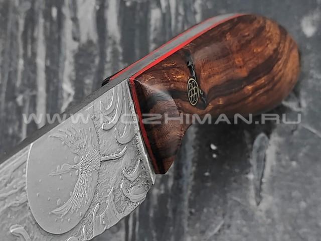 """Волчий Век нож """"Масичька"""" сталь M398 WA худ. травление, рукоять Ironwood"""