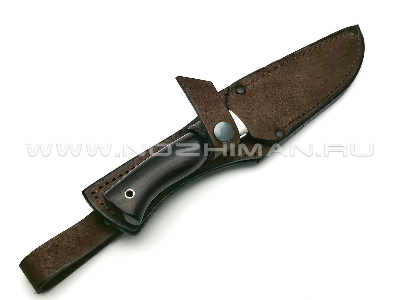 Нож Сокол сталь 95Х18, рукоять граб, мельхиор (Фурсач А. А.)