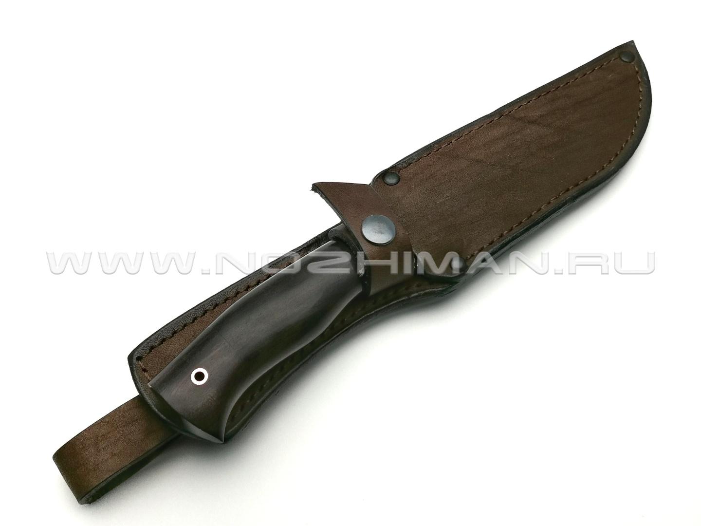 Нож Рысь сталь 95Х18, рукоять граб, мельхиор (Фурсач А. А.)