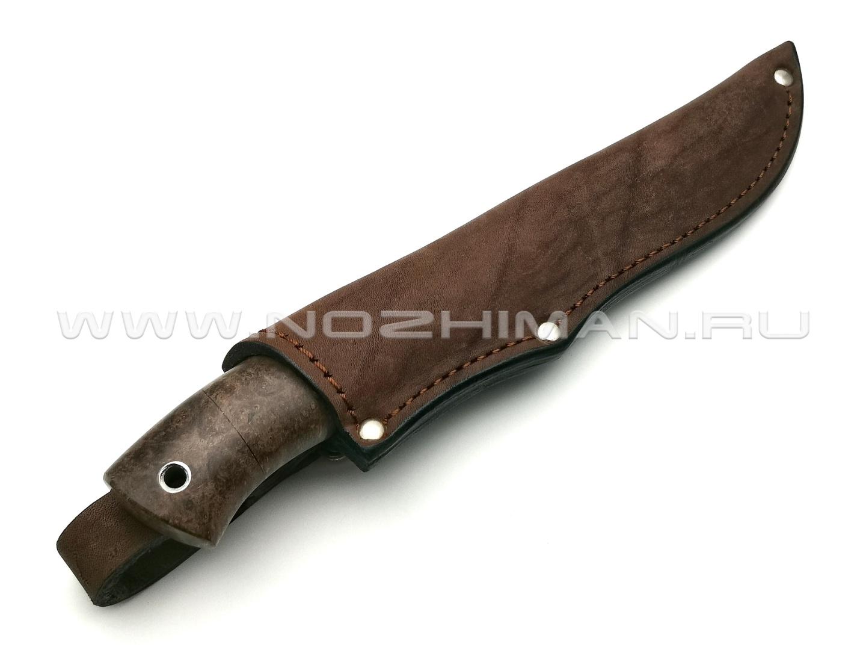 Нож Тигр сталь CPM 10V, рукоять кап клёна, мельхиор (Фурсач А. А.)