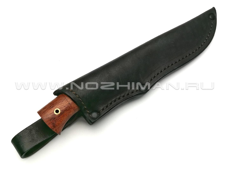 Нож Осётр сталь 95Х18, рукоять дерево падук, латунь (Фурсач А. А.)