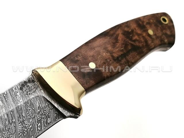 "Нож ""Боцман"" дамасская сталь, рукоять стаб. карельская береза, латунь"