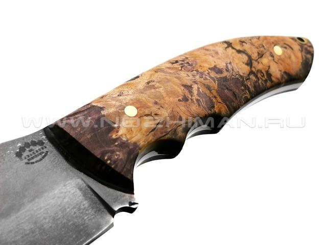 """Нож """"Ящер"""" булатная сталь, рукоять кап клёна (Товарищество Завьялова)"""