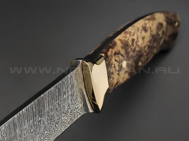 "Нож ""Боцман"" дамасская сталь, рукоять кап клёна, латунь (Мастерская Наследие)"
